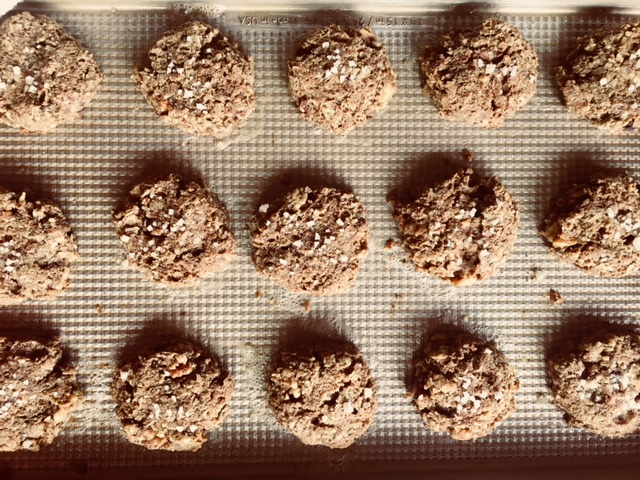 coconut walnut cookies